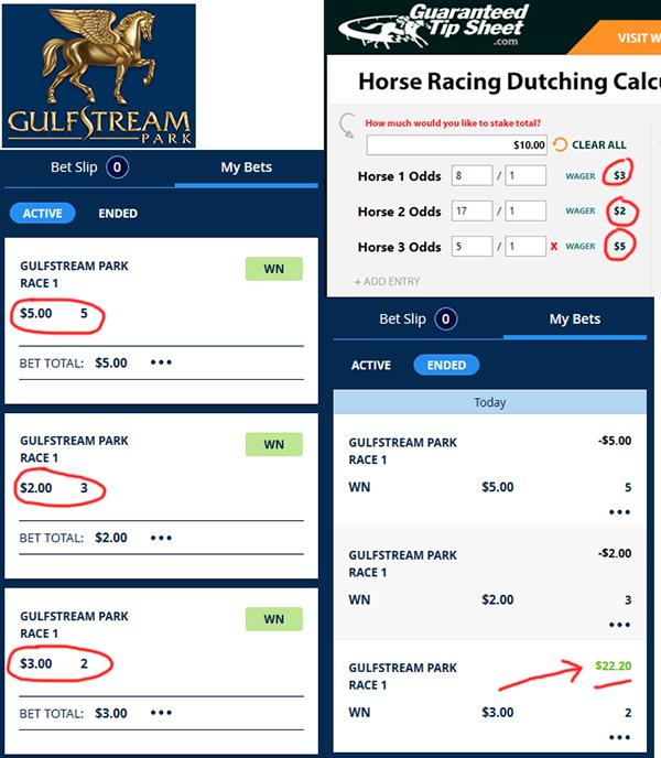 free exotic horse betting calculator