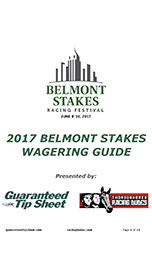 Belmont Stakes Guide Guide