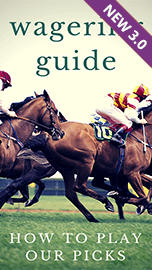 Horse Racing Wagering Guide