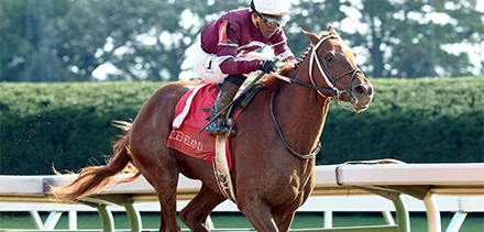 Wagering Guides and Betting Advice - Guaranteed Tip Sheet